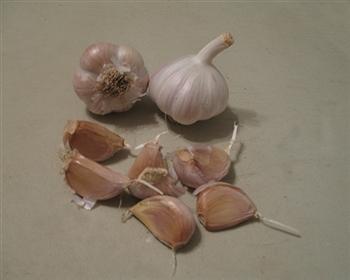 SG German White Garlic